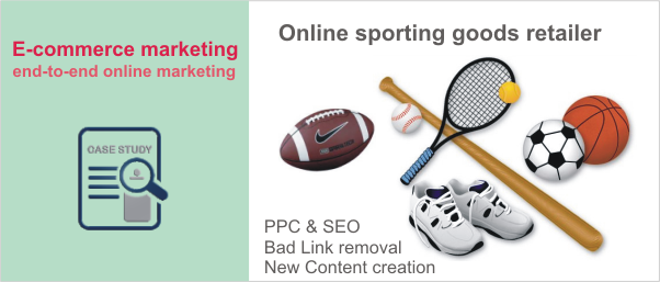 Rescued Sport goods e-commerce website from lost web organic traffic